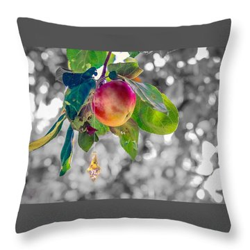 Apple And The Diamond Throw Pillow