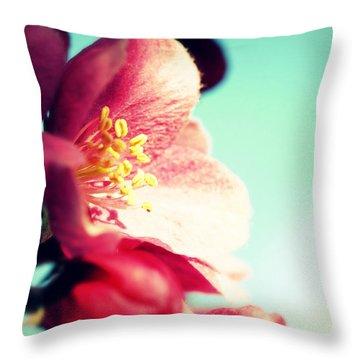 Apple Blossom Throw Pillow by Lisa Knechtel