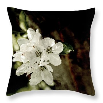 Apple Blossom Paper Throw Pillow