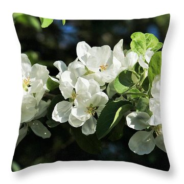 Apple Blossoms 2017 Throw Pillow