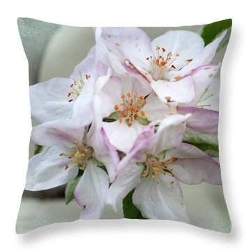 Apple Blossoms From My Hepburn Garden Throw Pillow