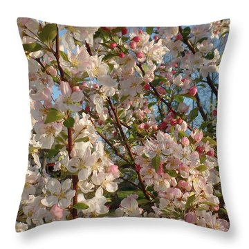 Apple Blossoms In Bow Throw Pillow by Karen Molenaar Terrell