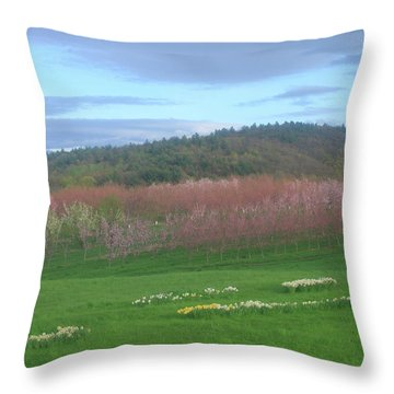 Apple Blossoms In Spring Throw Pillow by John Burk