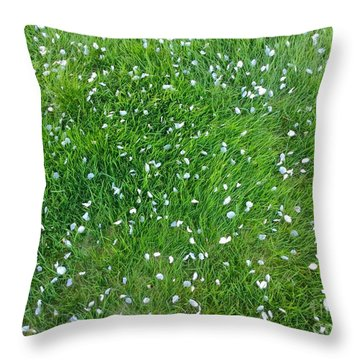 Apple Blossoms In The May Grass Throw Pillow by Patricia E Sundik