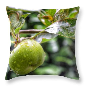 Throw Pillow featuring the photograph Apple In Rain by Isabella F Abbie Shores FRSA