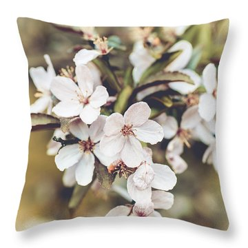Throw Pillow featuring the photograph Apple Spice by Christi Kraft