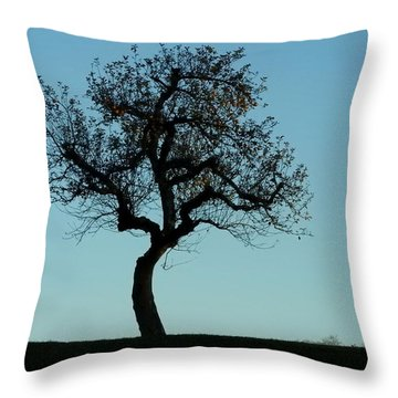 Apple Tree In November Throw Pillow