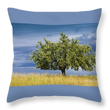 Apple Tree Summer Landscape Throw Pillow