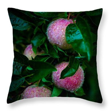 Apples After The Rain Throw Pillow