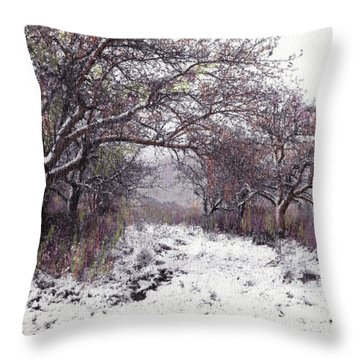 Throw Pillow featuring the photograph Apples Of The Asquamchumaukee by Wayne King