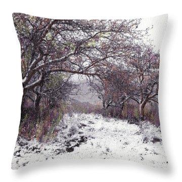 Apples Of The Asquamchumaukee Throw Pillow