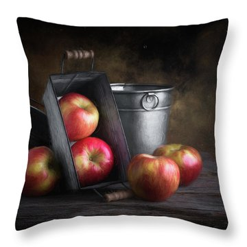 Stainless Steel Throw Pillows