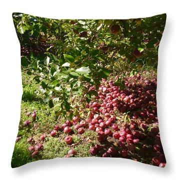 Apples...apples...everywhere Throw Pillow by Jason Nicholas