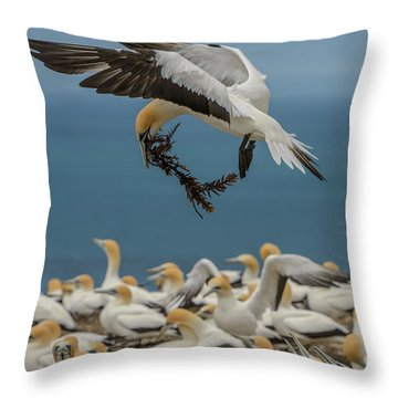 Applying The Brakes Throw Pillow