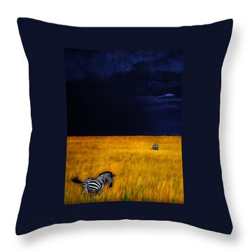 Approaching Storm Throw Pillow by Edith Peterson-Watson