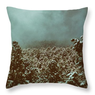 Approaching Storm Throw Pillow by Jason Coward