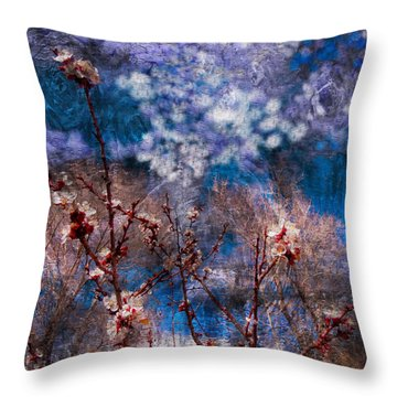 Apricot Blossoms El Valle IIi Throw Pillow