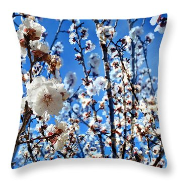 Throw Pillow featuring the photograph Apricot Blossoms by Glenn McCarthy Art and Photography