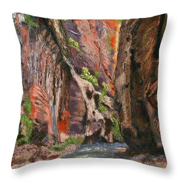 Apricot Canyon 2 Throw Pillow