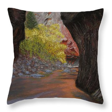 Apricot Canyon Throw Pillow
