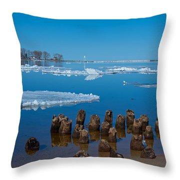 April Ice Throw Pillow