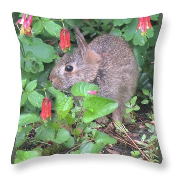 April Rabbit And Columbine Throw Pillow