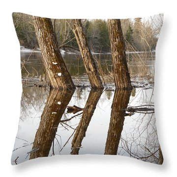 April Reflection Of Surrounded Trees Throw Pillow by Kent Lorentzen