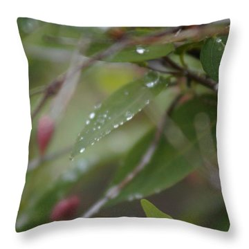 Throw Pillow featuring the photograph April Showers 1 by Antonio Romero