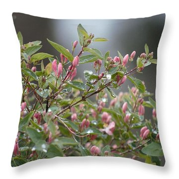 April Showers 10 Throw Pillow by Antonio Romero