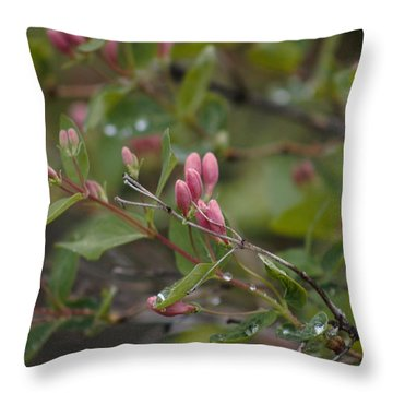 Throw Pillow featuring the photograph April Showers 2 by Antonio Romero