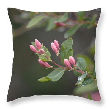 April Showers 3 Throw Pillow by Antonio Romero
