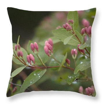 April Showers 4 Throw Pillow