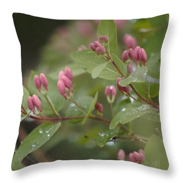 April Showers 4 Throw Pillow by Antonio Romero