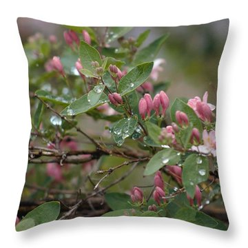April Showers 6 Throw Pillow by Antonio Romero