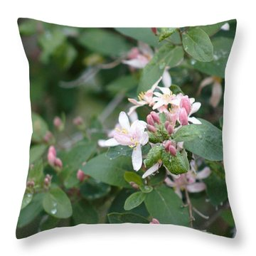 April Showers 9 Throw Pillow by Antonio Romero