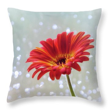 Throw Pillow featuring the photograph April Showers Gerbera Daisy Square by Terry DeLuco