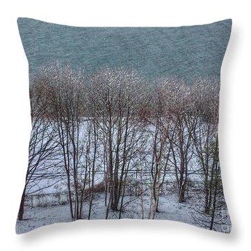 April Snow On Portland Trails Throw Pillow