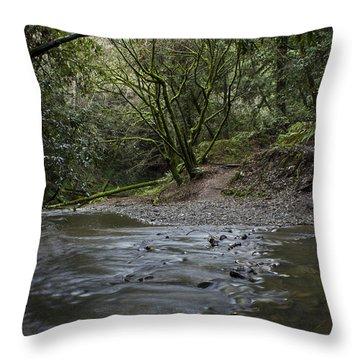 Aptos Creek -- Nisene Marks State Park Throw Pillow