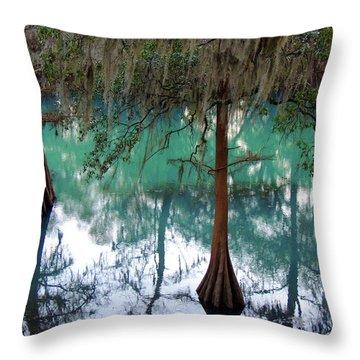 Aqua Beauty Throw Pillow by Kim Pate