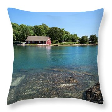 Aqua Bold Throw Pillow
