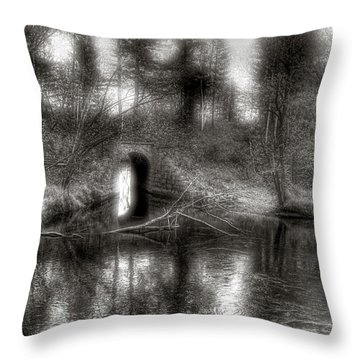 Aquaduct Monochrome Throw Pillow
