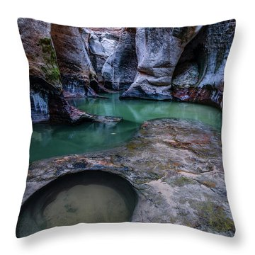 Throw Pillow featuring the photograph Aquamarine  by Dustin LeFevre