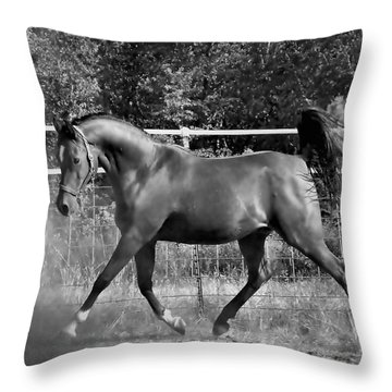 Arab At Play Bw Throw Pillow by Julia Hassett