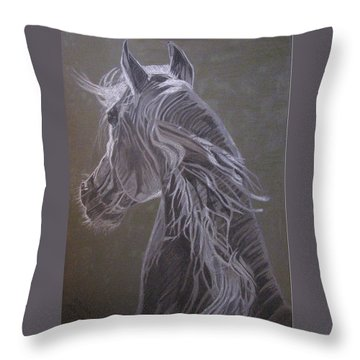 Arab Horse Throw Pillow by Melita Safran