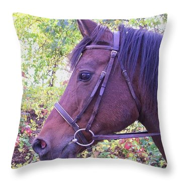 Arabian Beauty Throw Pillow