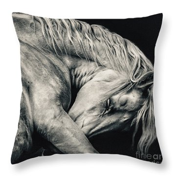 Arabian Beauty White Horse Portrait Throw Pillow