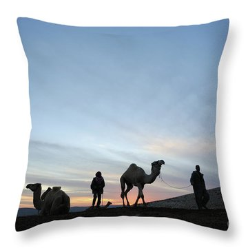 Arabian Camel At Sunset Throw Pillow by PhotoStock-Israel