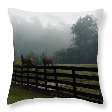 Arabian Horse Landscape Throw Pillow by Debra Crank