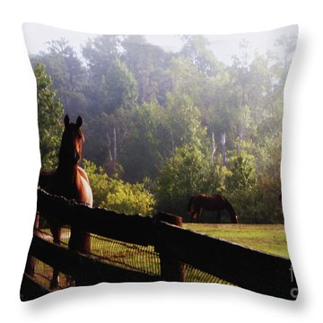 Arabian Horses In Field Throw Pillow by Debra Crank