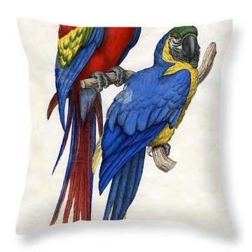 Aracangua And Blue And Yellow Macaw Throw Pillow